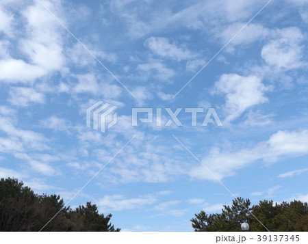 春の稲毛海浜公園の青空と白い雲 39137345