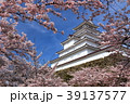 会津若松城と桜 39137577