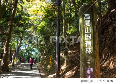 高尾山 (東京都八王子市) ※2017年11月撮影 39141070