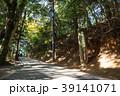 高尾山 登山道 道中の写真 39141071