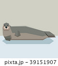 Flat design Bearded seal 39151907