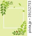 葉 新緑 フレームのイラスト 39152753