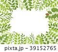 葉 新緑 フレームのイラスト 39152765