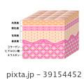 肌 断面図 皮膚細胞のイラスト 39154452