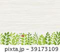 葉 新緑 フレームのイラスト 39173109