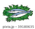魚二匹 魚 二匹のイラスト 39180635