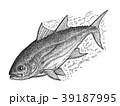 まぐろ マグロ 魚のイラスト 39187995