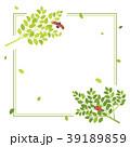 新緑 フレーム てんとう虫のイラスト 39189859