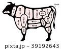 牛肉 ビーフ 部位 白背景 39192643