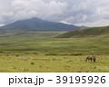 ンゴロンゴロ国立公園 39195926