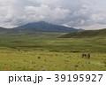 ンゴロンゴロ国立公園 39195927
