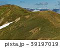 上越国境・仙ノ倉山稜線を行く登山者と残雪の白馬連峰遠望 39197019