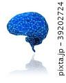 脳 39202724