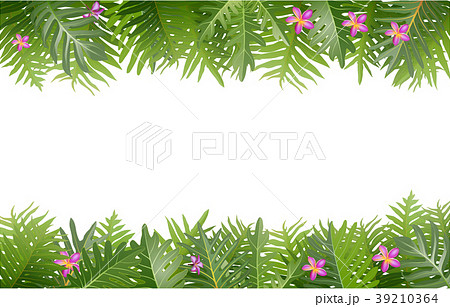 Exotic tropical leaf and frower border background  39210364