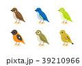 小鳥 39210966