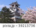 桜と高知城 39213736
