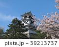 桜と高知城 39213737