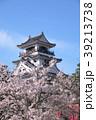 桜と高知城 39213738