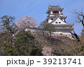 桜と高知城 39213741