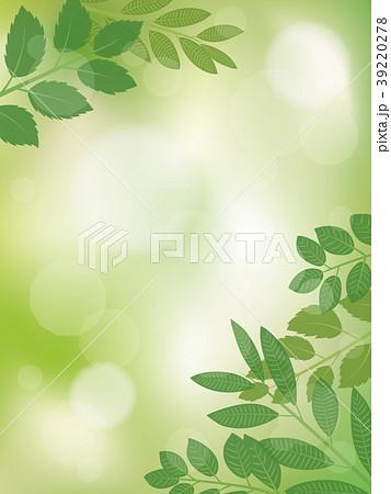 新緑 リーフのフレーム素材 39220278