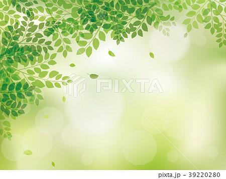 新緑 リーフのフレーム素材 39220280