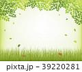 新緑 フレーム 芝生のイラスト 39220281