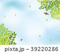 青空 新緑 てんとう虫のイラスト 39220286