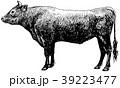 黒毛和牛 ペン画 39223477