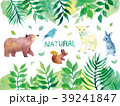 natural 動物 クマのイラスト 39241847