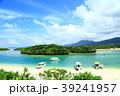 石垣島 川平湾 サンゴ礁と青い海 39241957