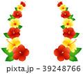 ハイビスカス トロピカル 植物のイラスト 39248766