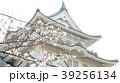 桜と城 39256134