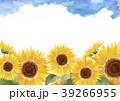 ひまわり 入道雲 背景 水彩画 39266955