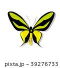 チョウ 蝴蝶 蝶のイラスト 39276733