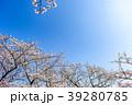 桜 青空 春の写真 39280785