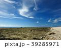 石垣島 海岸 晴れの写真 39285971