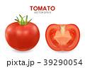 野菜 トマトソース 立体のイラスト 39290054