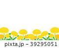 たんぽぽ 39295051