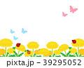 たんぽぽ 39295052