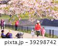 五稜郭の桜 39298742