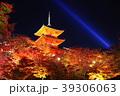 紅葉 ライトアップ 秋の写真 39306063