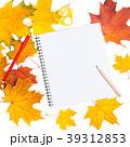 葉っぱ 紅葉 ノートの写真 39312853