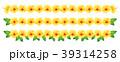 ハイビスカス トロピカル 植物のイラスト 39314258