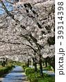 桜 染井吉野 春の写真 39314398