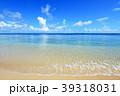 海 ビーチ 青空の写真 39318031