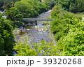 那珂川 川 新緑の写真 39320268