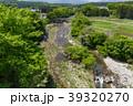 那珂川 川 新緑の写真 39320270
