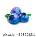 ブルーベリー くだもの フルーツのイラスト 39322831
