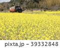 小湊鐵道 春 菜の花の写真 39332848