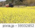 小湊鐵道 春 菜の花の写真 39332852